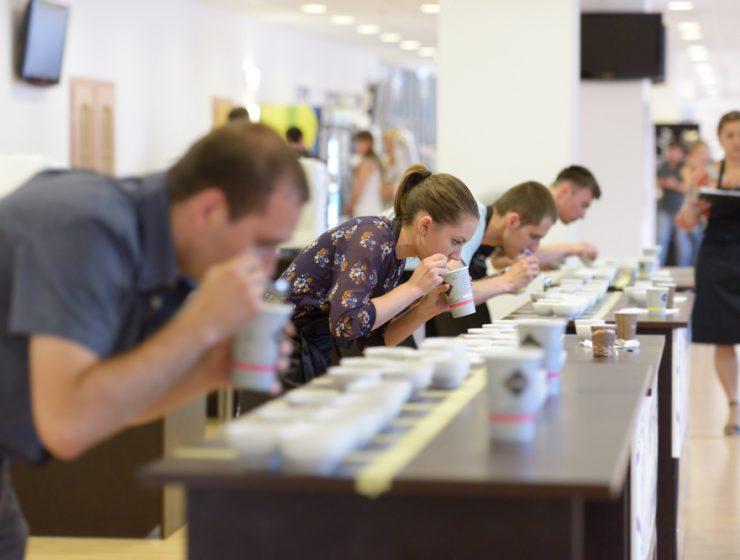 kahve yarışmaları