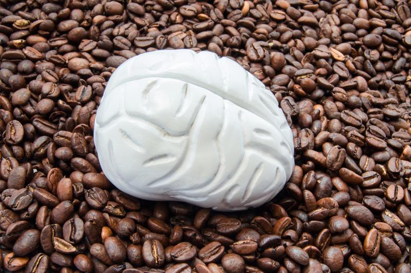 kahve çekirdekleri, beyin